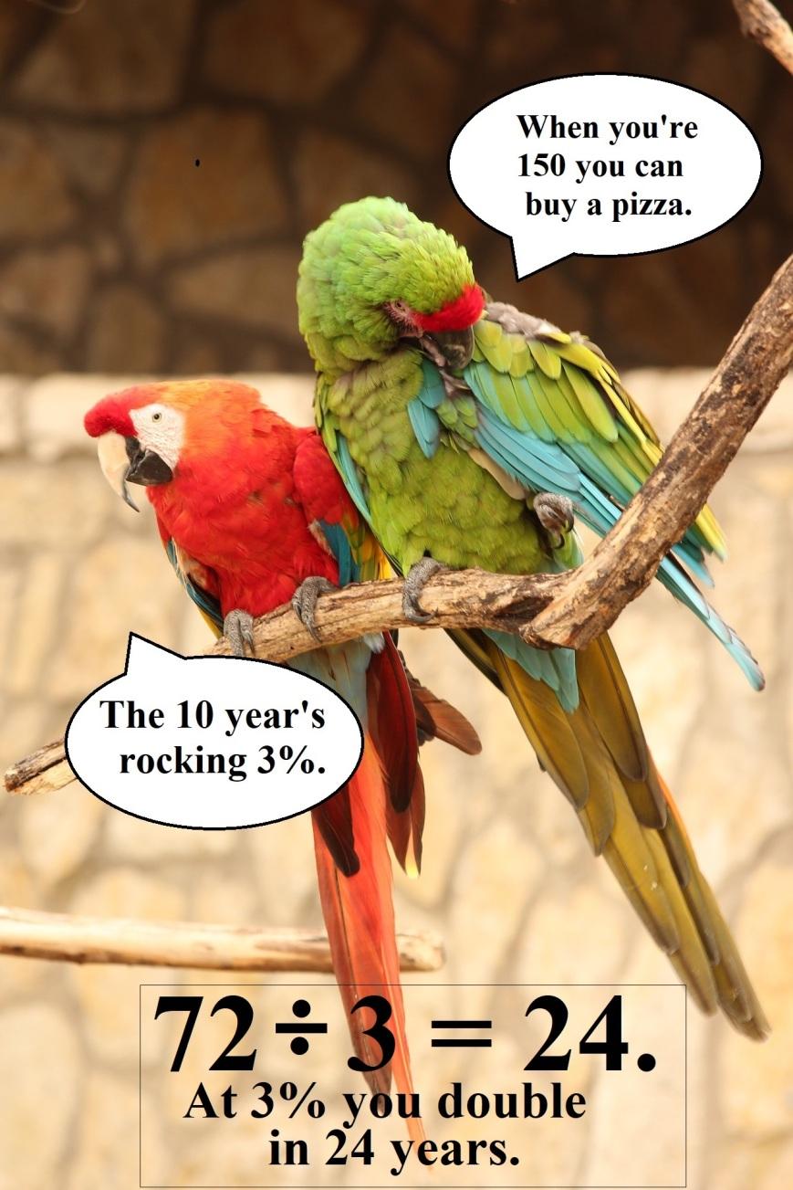 parrot-talk BOX