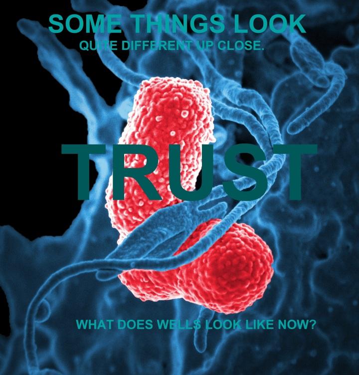 bacteria-Wells, trust