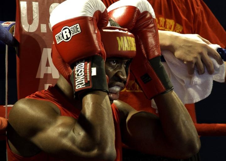 boxer-652399_1280