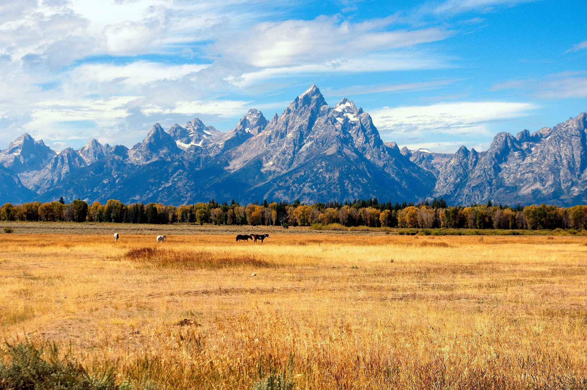 Jackson Hole, Grand Tetons