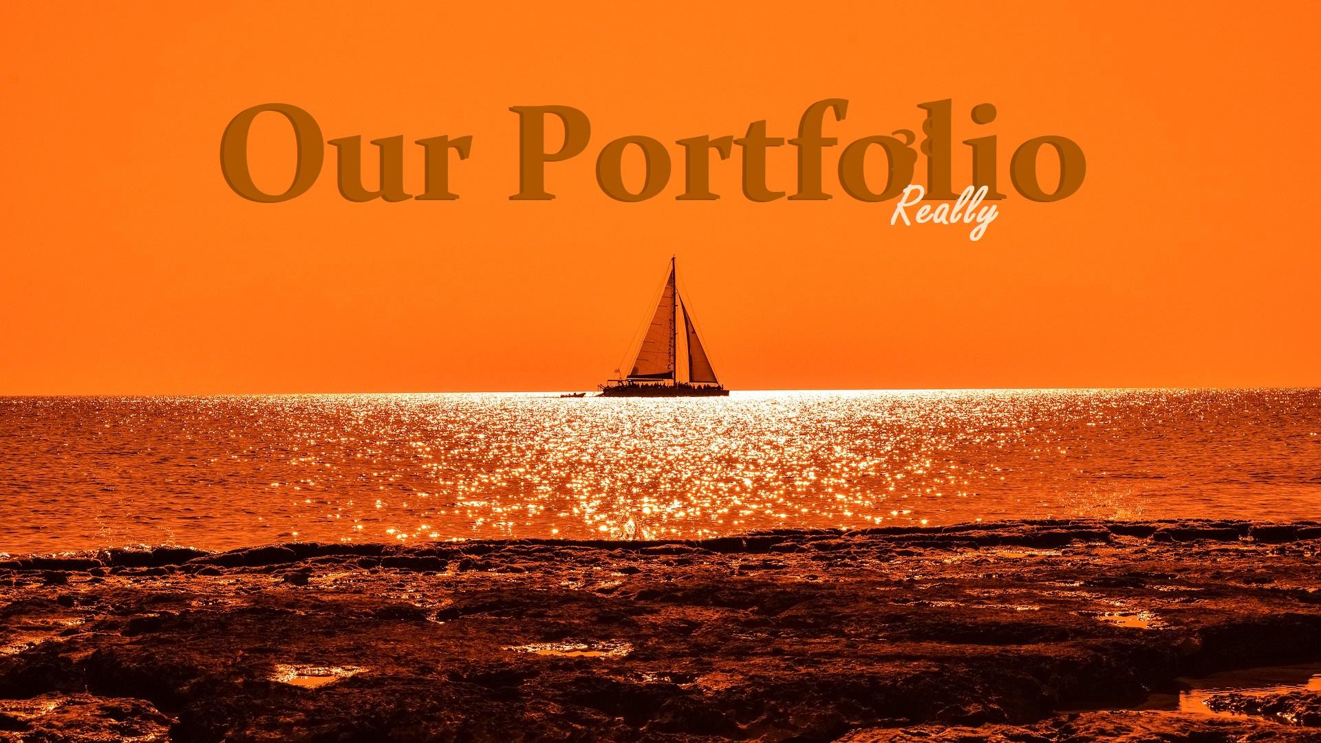 Our Portfolio 3
